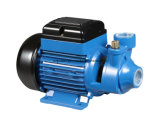 Bomba de água elétrica pequena Qb60 do impulsor de bronze 0.5HP