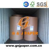 Divers genres de papier de Woodfree de taille de roulis à vendre