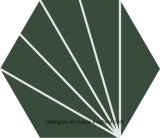 Плитка пола здорового 200*230mm Silk- полигона углов шестиугольника 6 печати керамическая