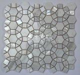 Mosaico de agua dulce del shell y del mármol