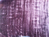 Enrugamento do rolamento que grava Velevt