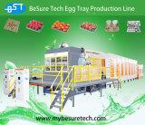 Поднос яичка делая машину (ET6000)