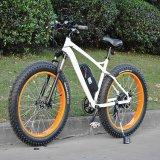 """26 """"助けられたペダルの熱い販売(RSEB-508)の脂肪質のタイヤの電気バイク"""