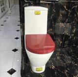 Foshan-gesundheitliche Ware-Toilette mit bündigem Zisterne-Verdoppelungmechanismus