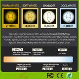 E12 économiseurs d'énergie 6W chauffent la lumière d'ampoule blanche de bougie des candélabres DEL