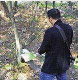 cortador de cepillo resistente del Árbol-Corte del uso del bosque de la potencia grande 65cc