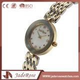 Waterdichte Horloge van het Roestvrij staal van de Wijzerplaat van dames het Grote Ronde