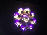 Lumière principale mobile légère d'étape légère du lavage 3in1 d'endroit de faisceau de Pointe 10r 280W Sharpy de robe longue de Superer de disco