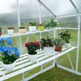 Mini serra di Comercial del policarbonato della serra delle serre del cortile della serra