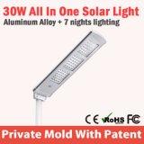 30W 제조자 IP65에서 태양 LED 가로등 가격은 5m를 설치한다