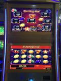 Máquina tragaperras de juego del bingo del programa de los centenares de los juegos video de China