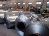 Bobina de aço da galvanização/folha lisa galvanizada nas bobinas