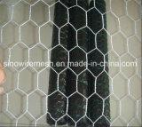 競争価格のPVC塗られるか、または熱い浸された電流を通された六角形ワイヤー網
