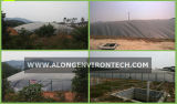 HDPE Membrane Biogas Digester Pool/Biogas Digester/Biogas Plant