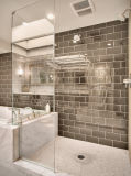 Chuveiro do vidro Tempered de Frameless Bathtroom na venda
