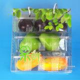 Caixa de presente da fruta do OEM com impressão de cor (cesta de fruta de dobramento)