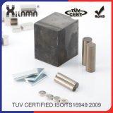 強いネオジムモーター磁石の強い常置希土類磁石