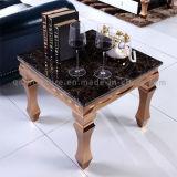 Tableau de marbre moderne de premier côté de type de luxe