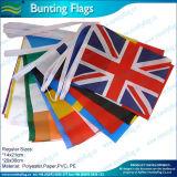 Banderas de encargo del empavesado del país de la tela (M-NF11F06028)
