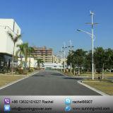 Sistema híbrido solar de la luz de calle de la fuente de alimentación del viento/(iluminación del LED)