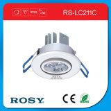 Kein Decken-Punkt-Licht des Röhrenblitz-Selbsterscheinen-LED
