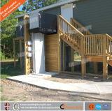 elevación vertical de la plataforma del sillón de ruedas eléctrico 250kg para la venta