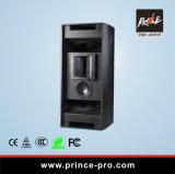 Ce Apprvoed het Krachtige PRO AudioSysteem van 15 Duim