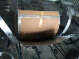bobinas de aço de 550MPa 0.4*914mm Zincalume com parte traseira Greenish/bobina de aço de Aluzinc