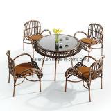 Tabella del ristorante del rattan della mobilia esterna poco costosa del patio e presidenza sintetiche (YT658-1)