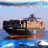 Agente de transporte internacional do oceano, serviço do armazém & remetente de frete (FCL 20 '' 40 '')