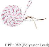 革が付いている馬装置の馬の鉛ロープ