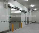 Progetto della cella frigorifera del portello scorrevole