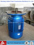 Кран серии Yez и используемый подъемом идущий мотор