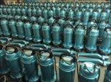 Der Iran-Markt gut, versenkbare Pumpe (QDX10-16-0.75) verkaufend