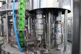 L'eau complètement automatique de gaz/équipement de mise en bouteilles de l'eau de scintillement