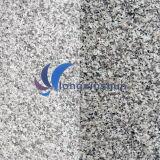 G623自然なカスタマイズされた白いですか灰色の花こう岩の平板
