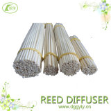 Home Decoration를 위한 자연적인 Bamboo Reed Sticks