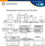 3 à 1 usine minérale pure de machine de remplissage d'eau potable de bouteille automatique