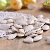 中国の健康食品の雪の白いカボチャシード11-14cm