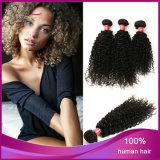 Do cabelo Curly Kinky do Virgin de 100% cabelo humano