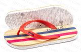 2016 горячих ботинок тапочки лета сбывания для людей (RF16183)