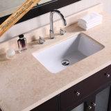 Тщета ванной комнаты типа конструкции твердой древесины европейская