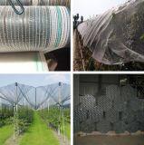 정원 사용 과일 나무를 위한 반대로 우박 그물