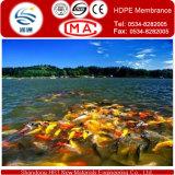 Geomembrane per la fodera dell'impresa di piscicolture della fodera di /Pond della fodera della diga