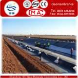 HDPE nero Geomembrane di Vrigin in Rolls