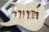 Art-elektrische Gitarren-Installationssatz der Hanhai Musik-/Str. mit Floyd Rose/DIY Gitarre