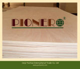 熱いSale 5mm Bintangor Commercial Plywood