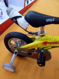 China Alloy Kids Bike, Alloy Children Bike, New Bicycle in Alloy