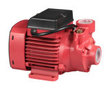 Pompe centrifuge de carburant électrique de vortex du rendement élevé 0.75HP Qb70 fabriquée en Chine