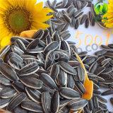 販売法の中国の黒いヒマワリの種の市価5009